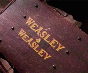 harry potter, weasley, and hogwarts image
