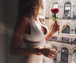 beauty, classy, and rose image