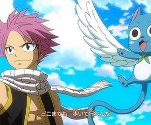 happy, fairy tail, and natsu dragneel image