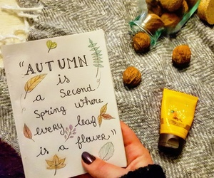 automne, blanket, and fall image