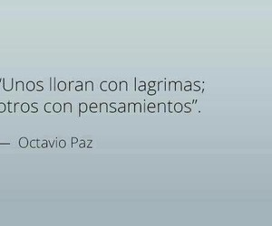 frases, quotes, and pensamientos image