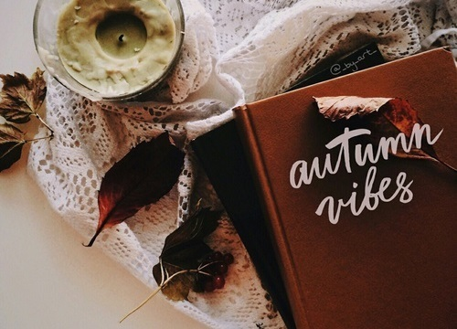 article, fuzzy, and autumn image