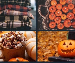 drinks, fall, and flannel image