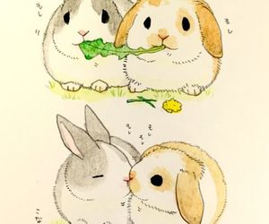 rabbit, animals, and couple image