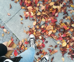 autumn and poetry image