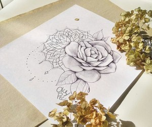 drawing, illustration, and ink image