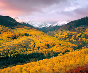 nature, yellow, and mountains image