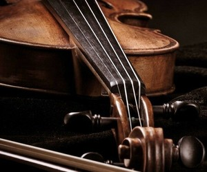 music, violin, and brown image