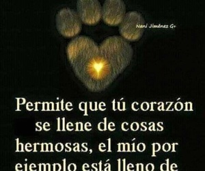dogs, frases, and quotes image