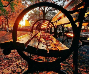 autumn, fall, and park image
