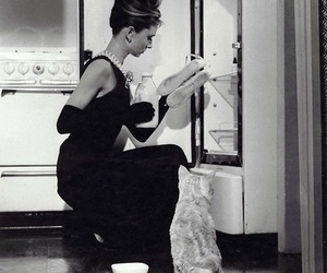 audrey hepburn, Breakfast at Tiffany's, and cat image