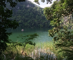 Island, jungle, and lake image