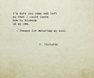 poem, quotes, and poetry image