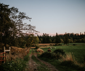 countryside, nature, and path image