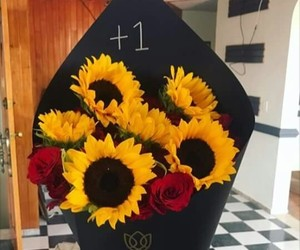 flores, girasol, and goals image