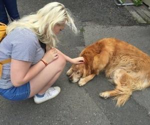 dog, girl, and grunge image
