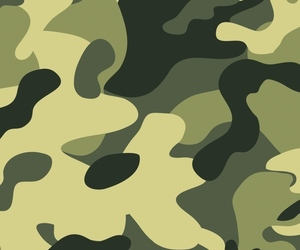 camouflage and background image