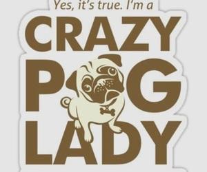 fun, inspiration, and pug image