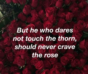 quotes, thorn, and love image