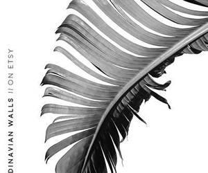 etsy, palm leaves, and botanical prints image