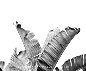 contemporary art, etsy, and palm leaves image