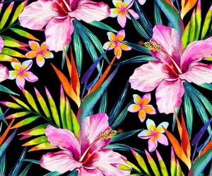 background, wallpaper, and flowers image