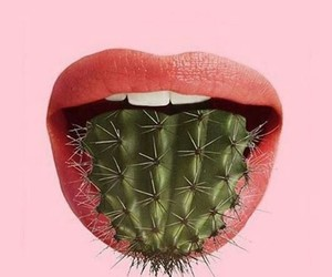 alternative, cactus, and pink image