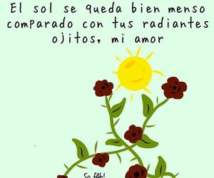 couple, flores, and frase image