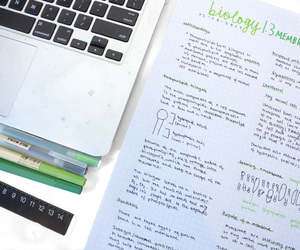 notes, school, and studyspo image
