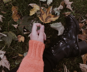 aesthetic, autumn, and article image