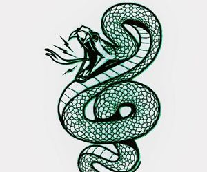 harry potter, slytherin, and snake image