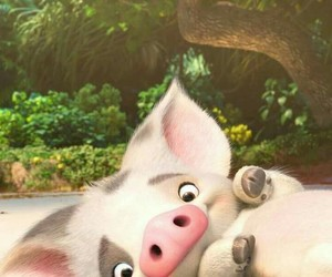pig, cute, and moana image