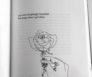 love, quotes, and rose image