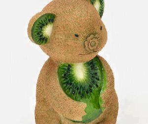 kiwi, fruit, and Koala image