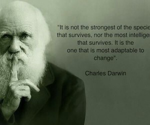 quotes, charles darwin, and change image