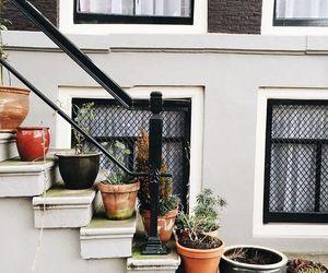 plants, design, and vintage image