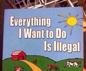 illegal, funny, and book image