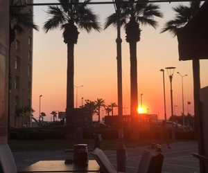 izmir, palm, and sunset image