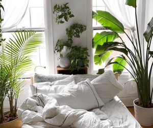 how to achieve a plant filled bedroom