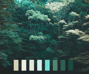 green, nature, and colors image