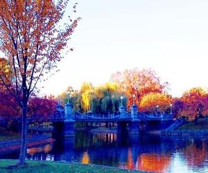 autumn, boston, and new england image