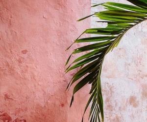 blush, shades, and colors image