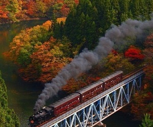 train, autumn, and fall image