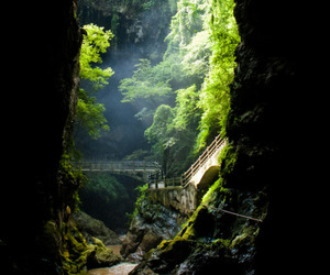 nature, cave, and green image