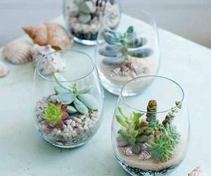 diy, home, and plants image