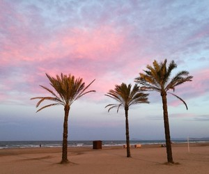 day, palms, and spain image