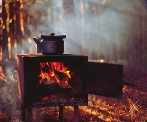fire, fall, and nature image