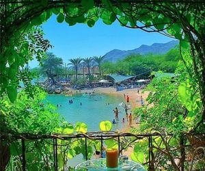 holidays, tropical, and eilat image