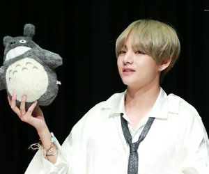 totoro, v, and bts image
