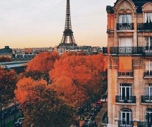 paris, autumn, and fall image